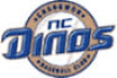 NC 디노