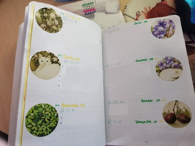 bullet journal thme printemps
