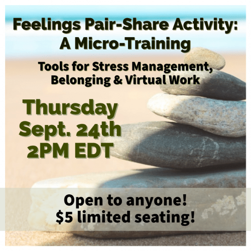 Feelings Pair-Share Activity: A MicroTraining September 24th, 2PM, 2020