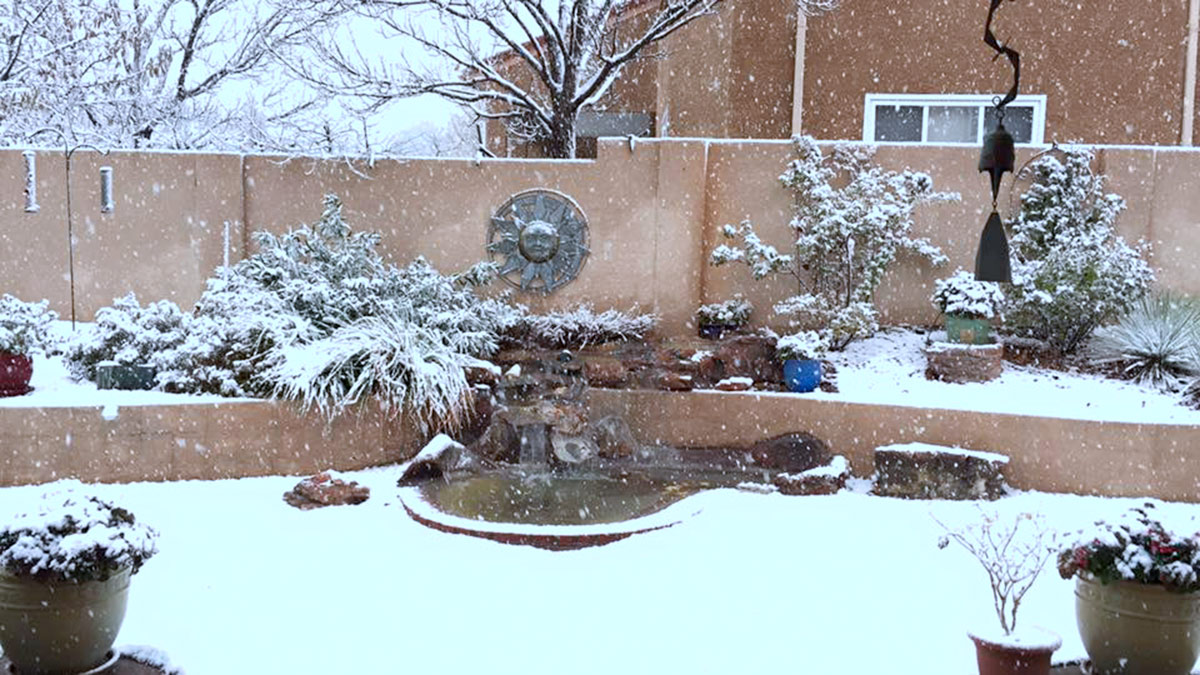 Early snow in the Albuquerque foothills