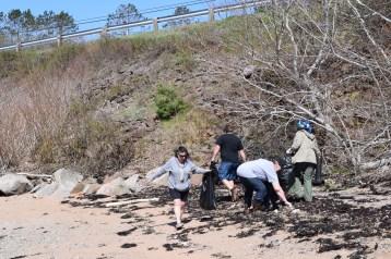 Digby Beach Sweep 5