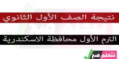 نتيجة الصف الأول الإعدادي الترم الأول برقم الجلوس محافظة الاسكندرية