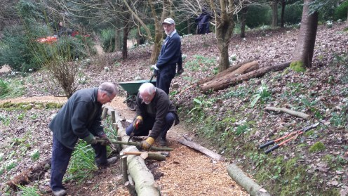 Building new wooden revetment using recently felled trees from the garden.