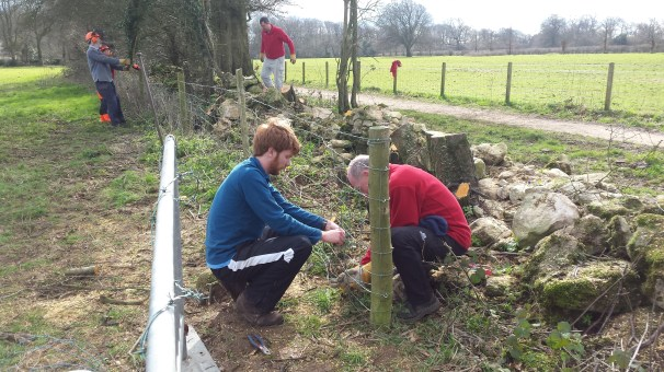 Will and Mike fixing up the fence.