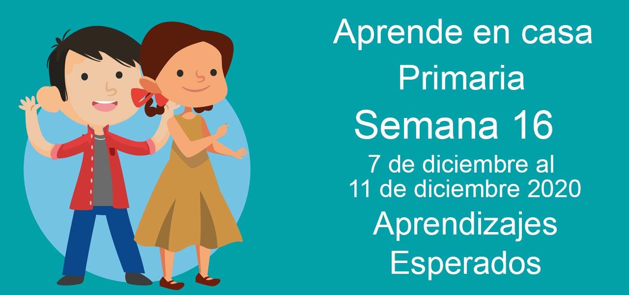 aprende en casa primaria semana 16