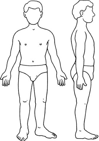 Silueta del cuerpo humano   Silueta del cuerpo humano, Cuerpo humano, Cuerpo  humano para niños