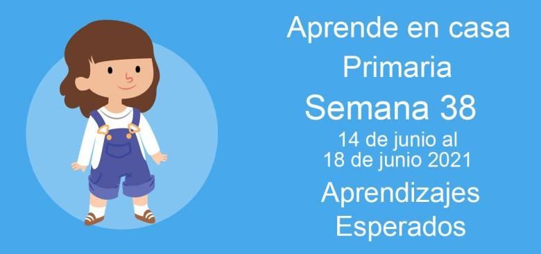 Aprendizajes esperados Aprende en Casa Semana 38 del 14 al 18 de junio de aprende en casa Primaria