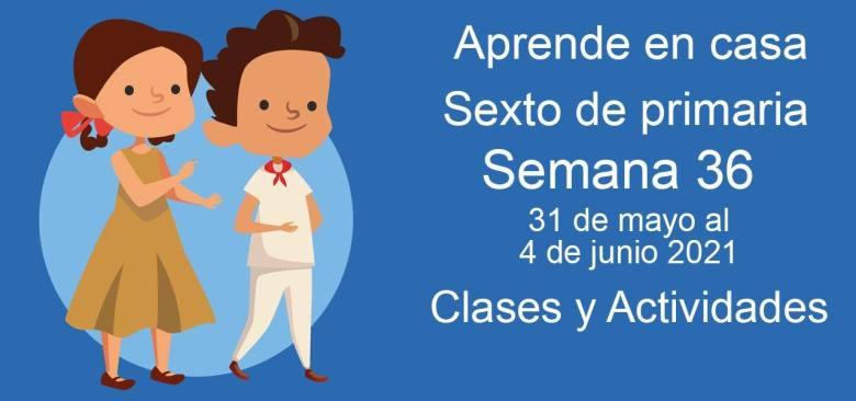 Aprende en casa sexto de primaria semana 36 del 31 de mayo al 4 de junio 2021 clases y actividades