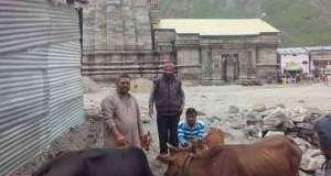 nti-news-cowshed-start-working-in-kedarnath-