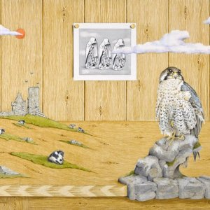 Catherine Daly - Nua Collective - Artist - Guardians of the Past (Peregrine)