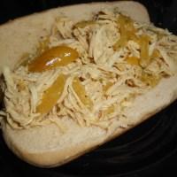 Ryan's Zesty Slow Cooker Chicken