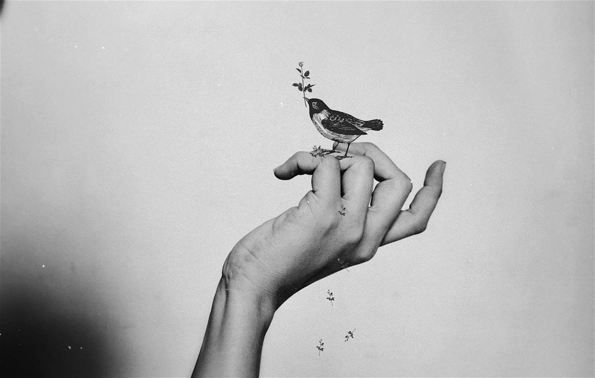 Pájaro del instante: taller de poesía