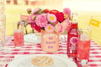 Southern-Weddings-southern-wedding-ideas-gingham-wedding-ideas-izze-wedding-soda