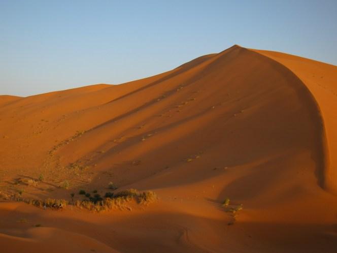28-CaravansofGold-SaharaDunes