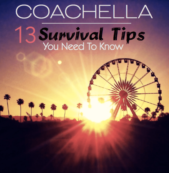 Coachella Festival _ Survival Guide_Pin