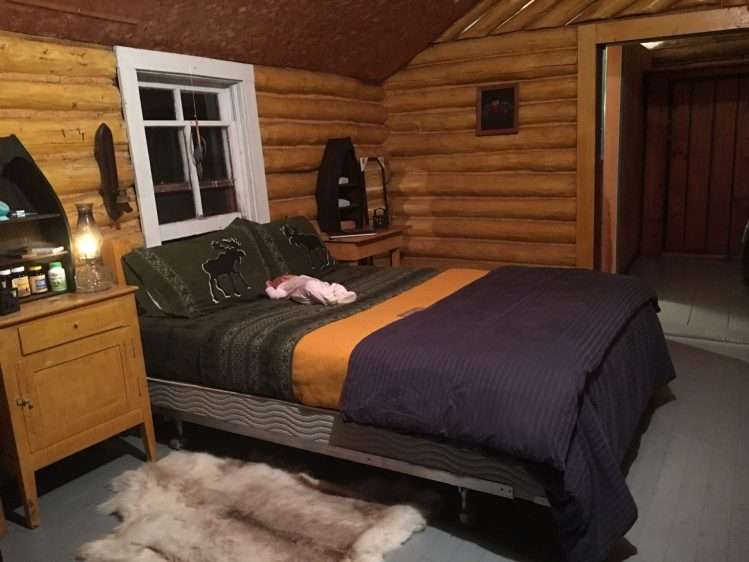 log cabin with bed for glamping