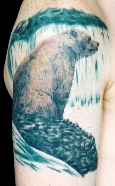 bear_stream
