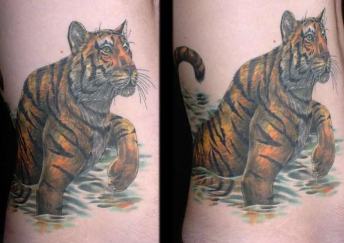 tiger_water