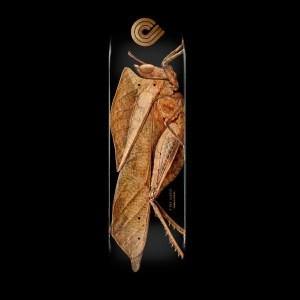 8.5″ Powell Peralta BISS Leaf Grasshopper