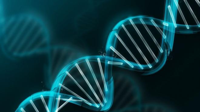 Δημιουργήθηκε ο πρώτος έμβιος συνθετικός μικροοργανισμός με DNA κατά 100% ανασχεδιασμένο από τους ανθρώπους