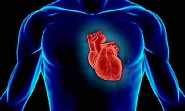 Έρευνα αναδεικνύει τη σύνδεση καρδιακών νοσημάτων με τον καρκίνο