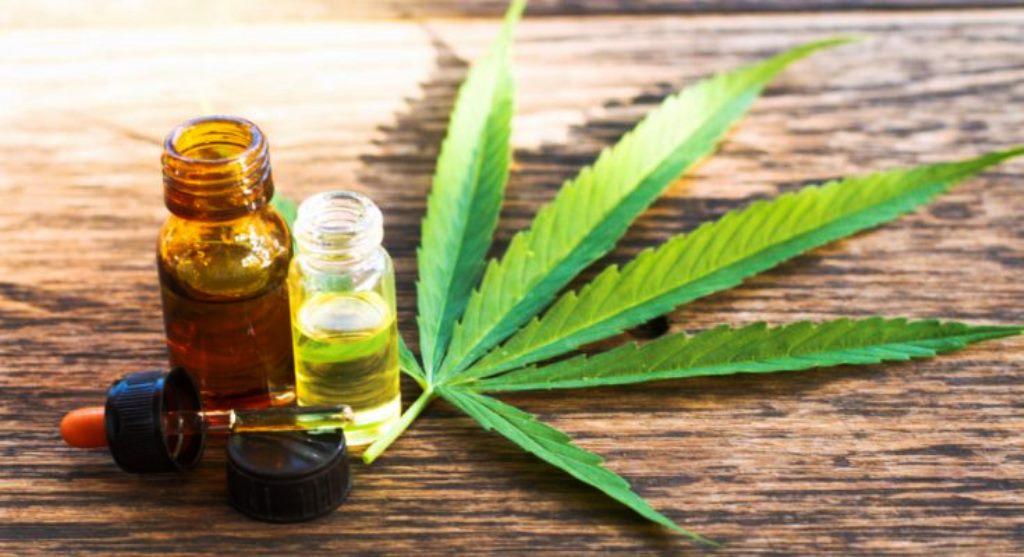 Φαρμακευτική κάνναβη: Κατηγορηματικός ο ΕΟΦ για τη χρήση της