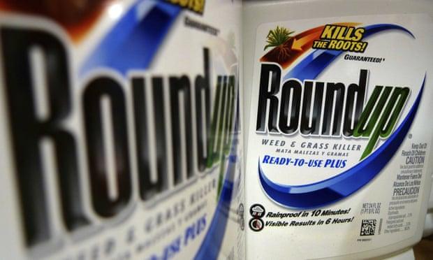 Έκθεση σε ζιζανιοκτόνα που περιέχουν Γλυφοσάτη (Roundup) αυξάνει τον κίνδυνο καρκίνου κατά 41% - Μελέτη