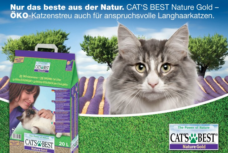 40_13_02_QP_Katalog_Inserate_2014_Cats_Best_Gold