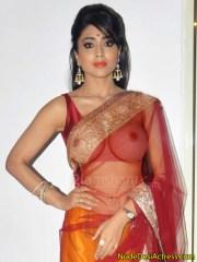 Shriya Saran not wearing any blouse in saree