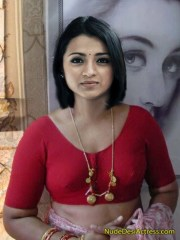 Small Boobs Trisha in Blouse without saree