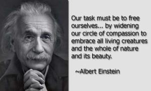 Einstein-Quote-4