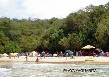Nudistas Venezolanos - Playa Yaguarita