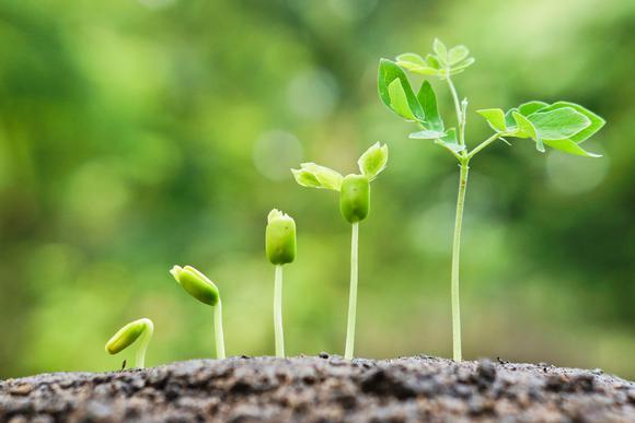 Resultado de imagen para crecimiento espiritual