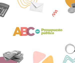 Presentamos junto a organizaciones de todo el país el ABC del Presupuesto en las Provincias Argentinas