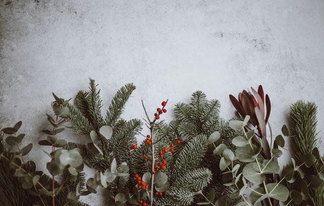 Des idées de cadeaux de Noël naturistes
