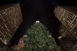 Arbol de Navidad en el Rockefeller Center Foto Will Steacy