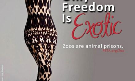 Super modelo enemiga de los zoológicos