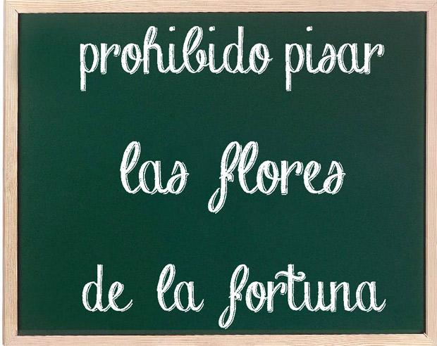 concentracionLasFlores