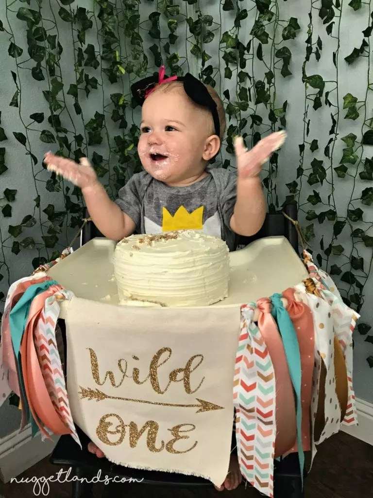 cake smash wild one birthday