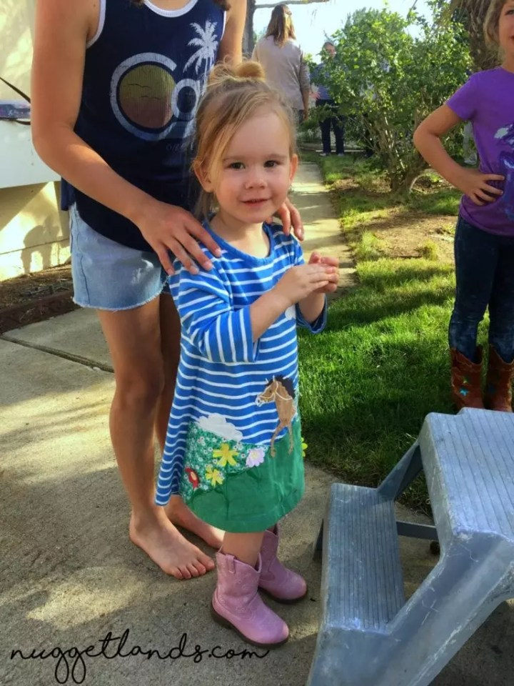 How We Pulled Off A Cowgirl Birthday Party 5 Weeks Postpartum