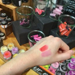 Lush Cardiff Christmas Blogger Event
