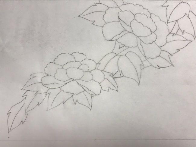 牡丹と蝶の花丸紋の加賀繍の名古屋帯の腹部分の最終形の下絵・斜めに流れru図案・完成図