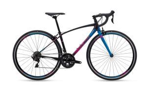 9 Rekomendasi Sepeda Polygon sesuai Kebutuhan dan Anggaran - Polygon Divine R5
