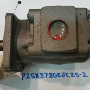 Pump, Hydraulic E-Z Pack # 20-26662 P25X378GEJC25-2