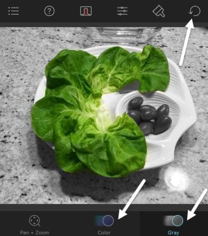 Color Splash App IOS Free Download