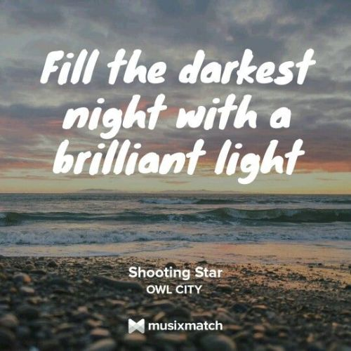 Musixmatch Lyrics App Android Free Download