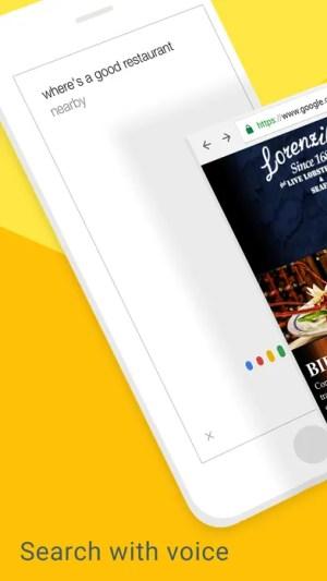 Google Chrome Ipa App iOS Free Download
