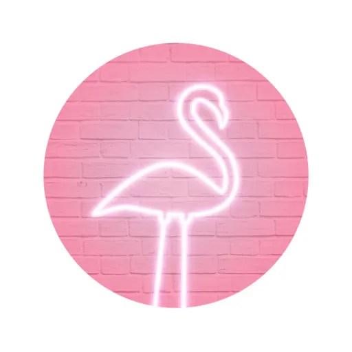 PinkMoon – Flamingo Ipa App iOS Free Download