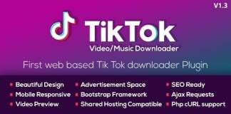 TikTok Video and Music Downloader without Watermark Null PHP Script