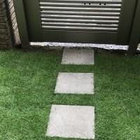 1カ月経過の芝